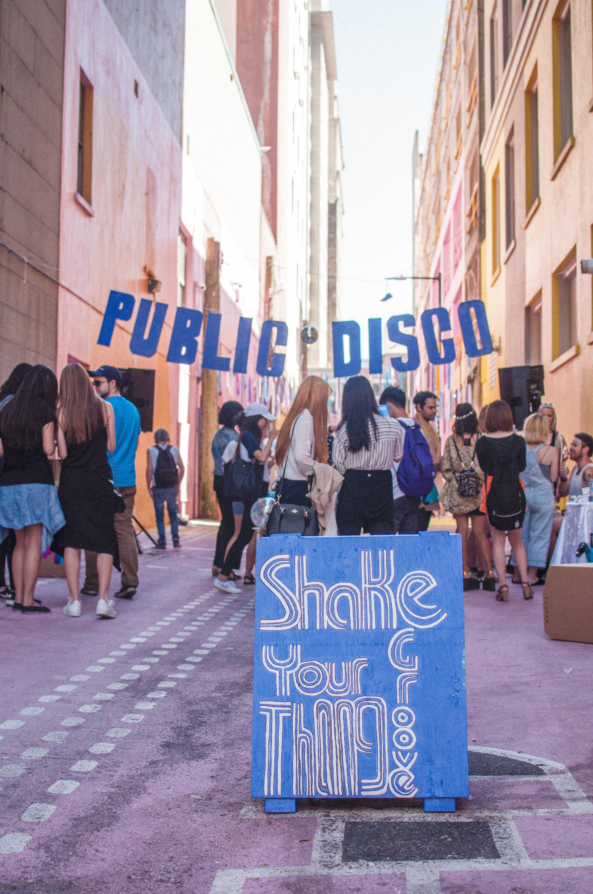 Public Disco Vol 1 (37 of 88).jpg