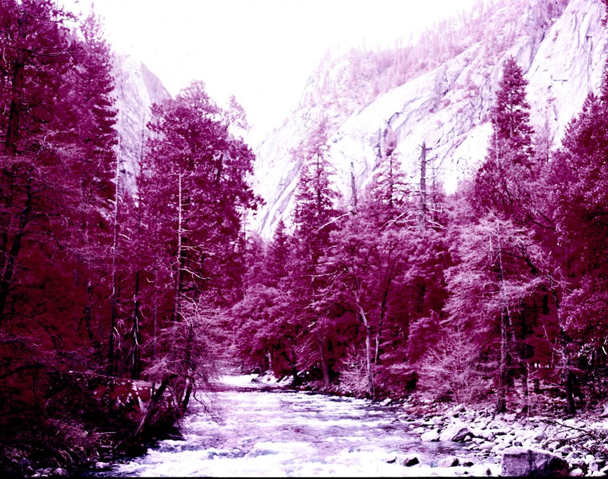 Yosemite 14.jpg