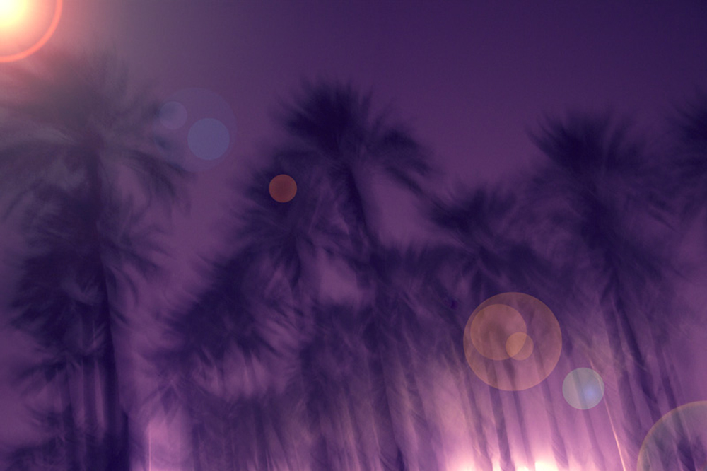 Coachella+11+copy.jpg
