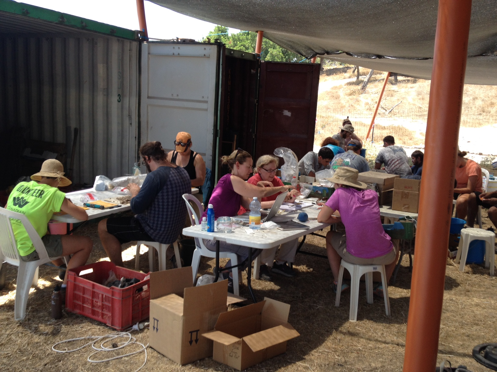 Volunteers working with archaeobotanists and zooarchaeologists.