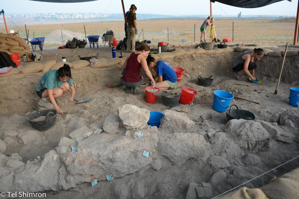 Excavation in Grid 94