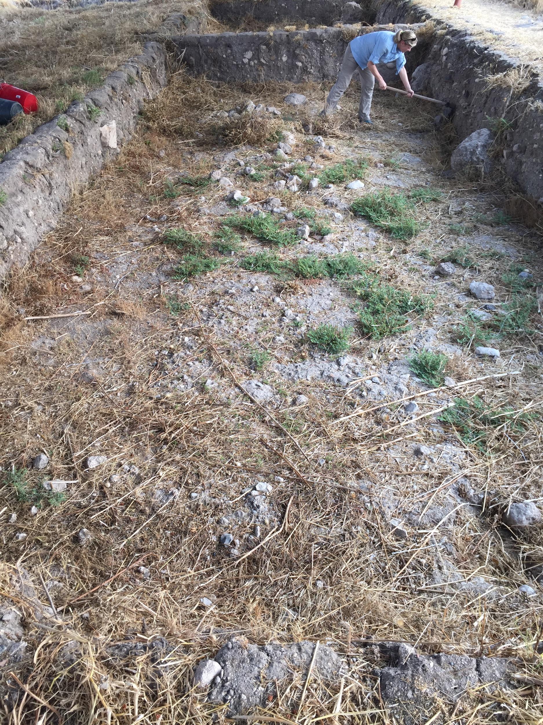 Dr. Kate Birney preparing Grid 94 for excavation