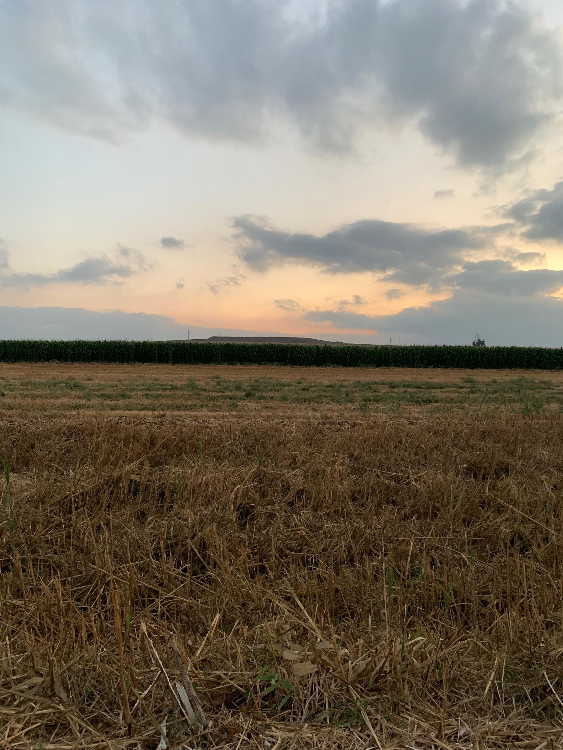 Mizra at sunset