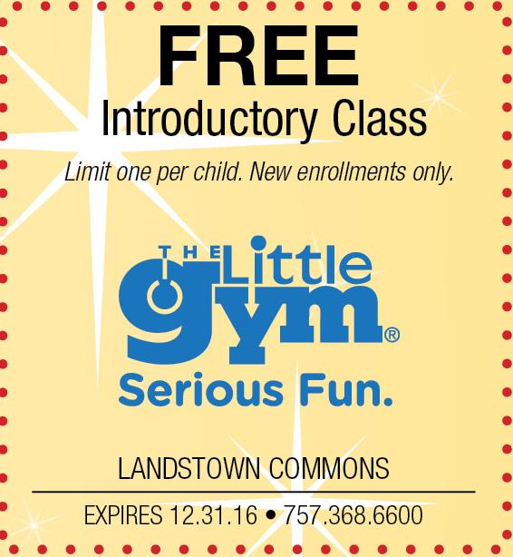 The Little Gym.jpg