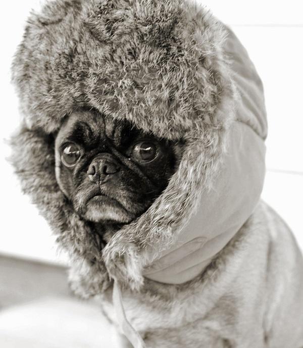 brrrr re.jpg