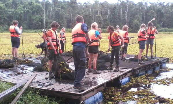 Clearing weed from the lake