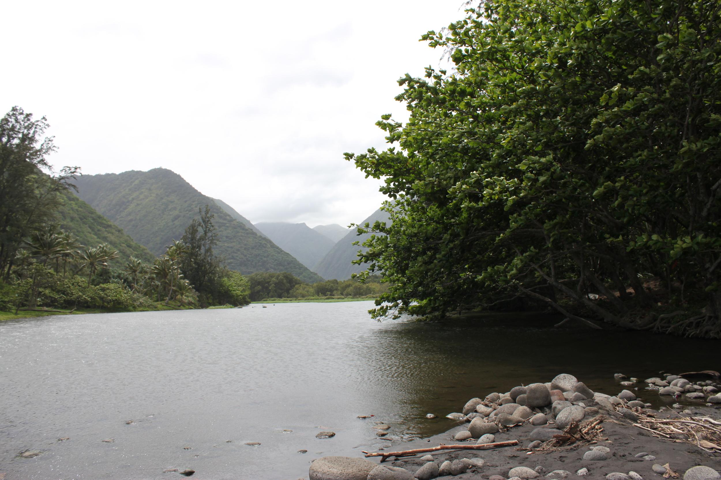 hawaii-2011-454.jpg
