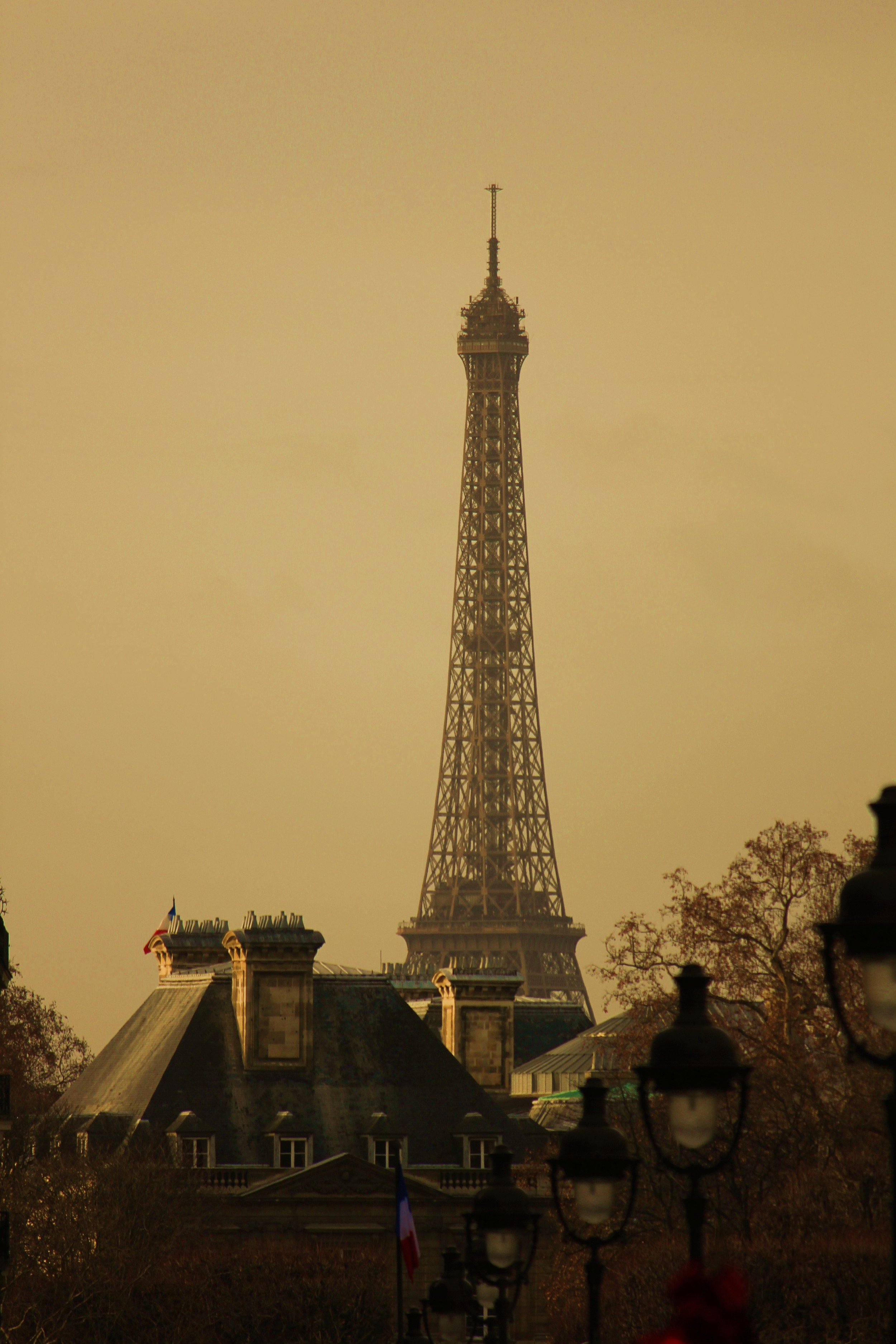 paris-2011-243.jpg