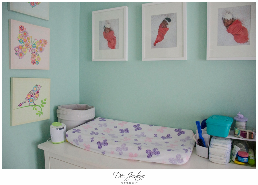 Teal Raspberry and Pink Nursery Baby Room 0003.jpg