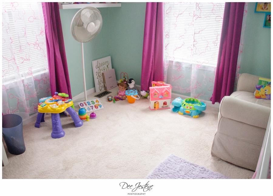 Teal Raspberry and Pink Nursery Baby Room 0004.jpg