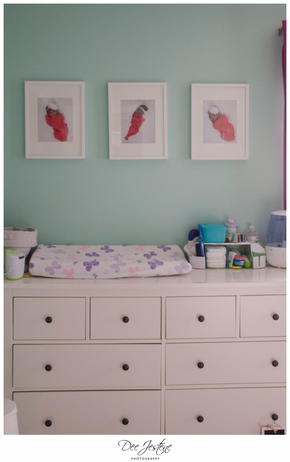 Teal Raspberry and Pink Nursery Baby Room 0007.jpg