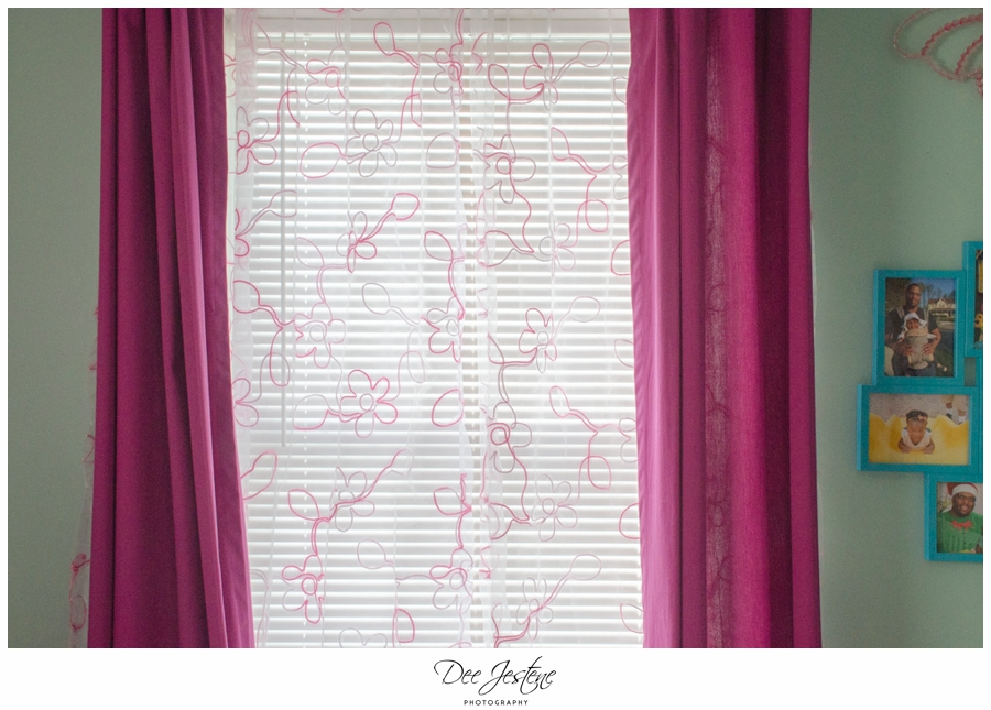 Teal Raspberry and Pink Nursery Baby Room 0006.jpg