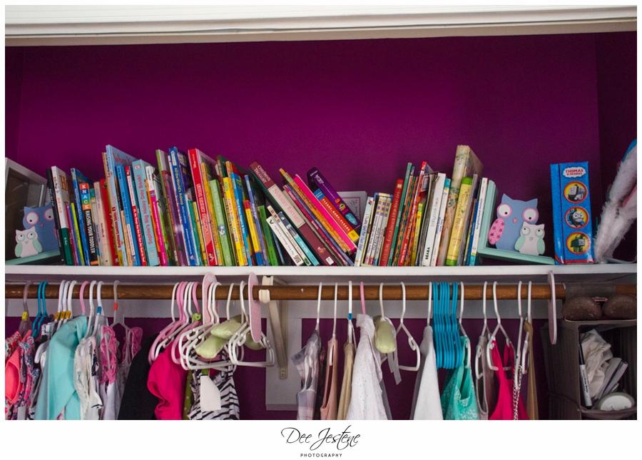 Teal Raspberry and Pink Nursery Baby Room 0008.jpg