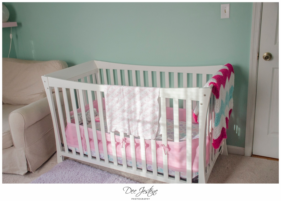 Teal Raspberry and Pink Nursery Baby Room 0010.jpg