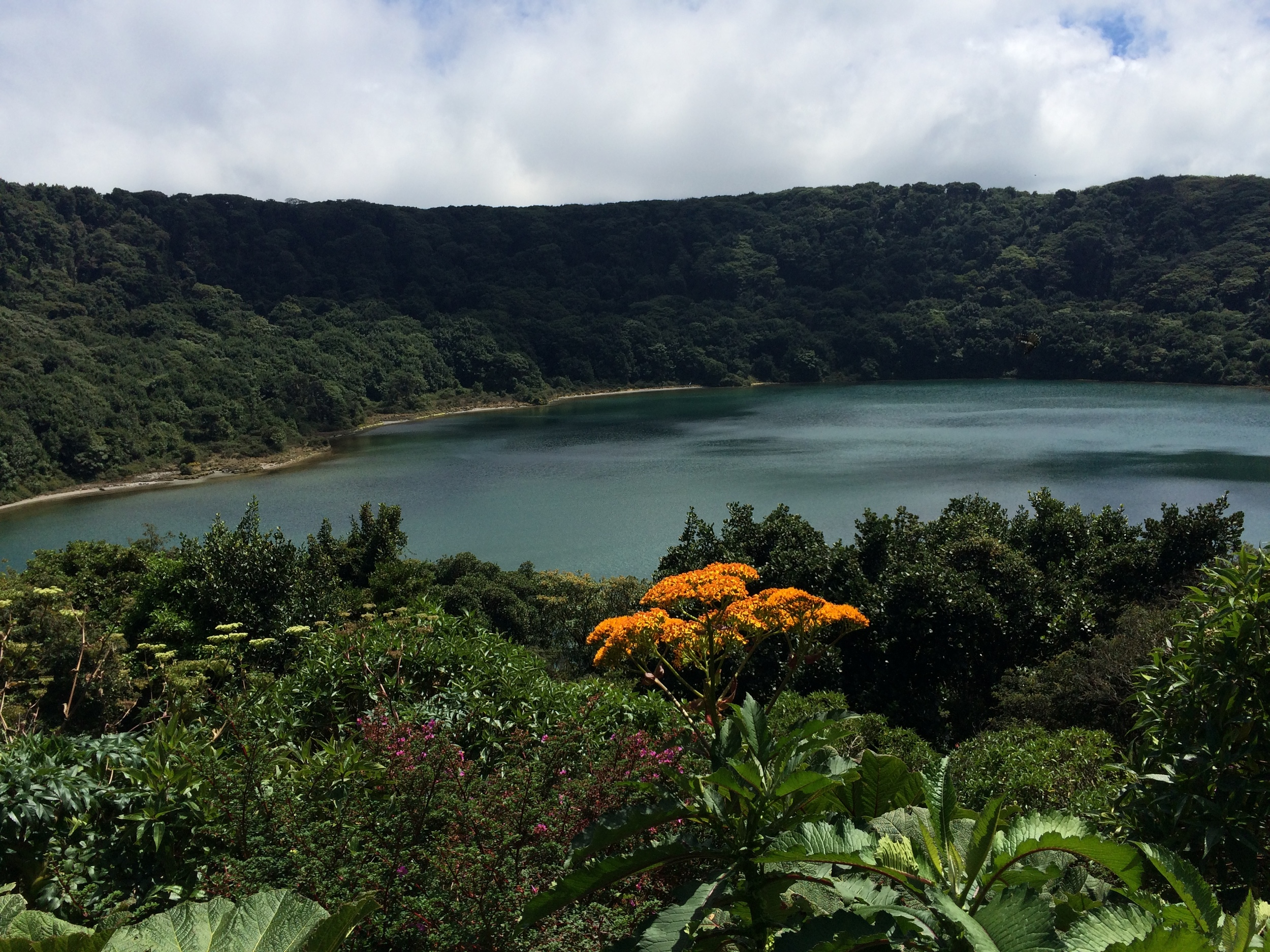 Lake-filled crater on Volcan Poas surrounded by blooming plants