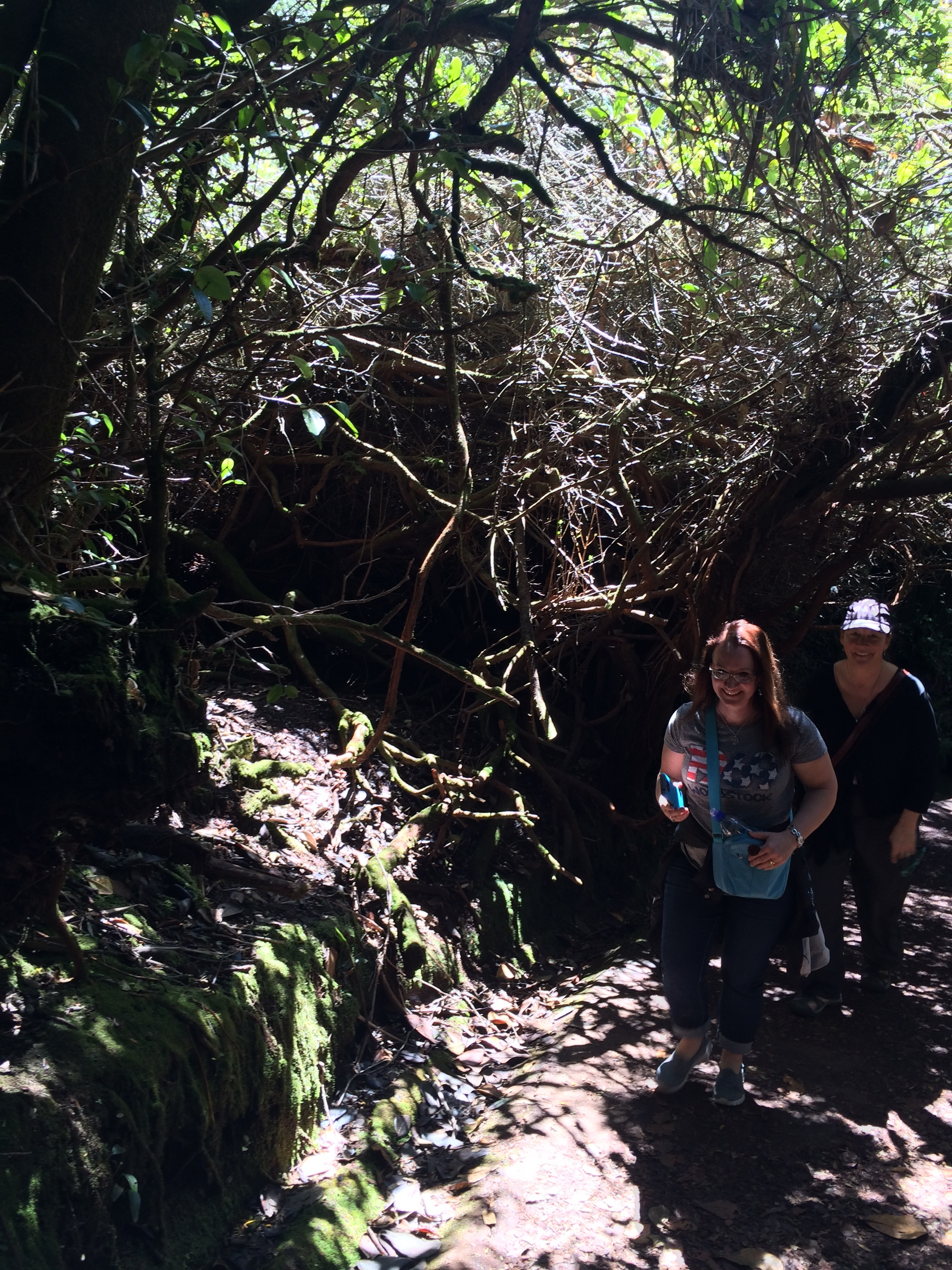 Katrina and Judith making their way along the trail on Volcan Poas