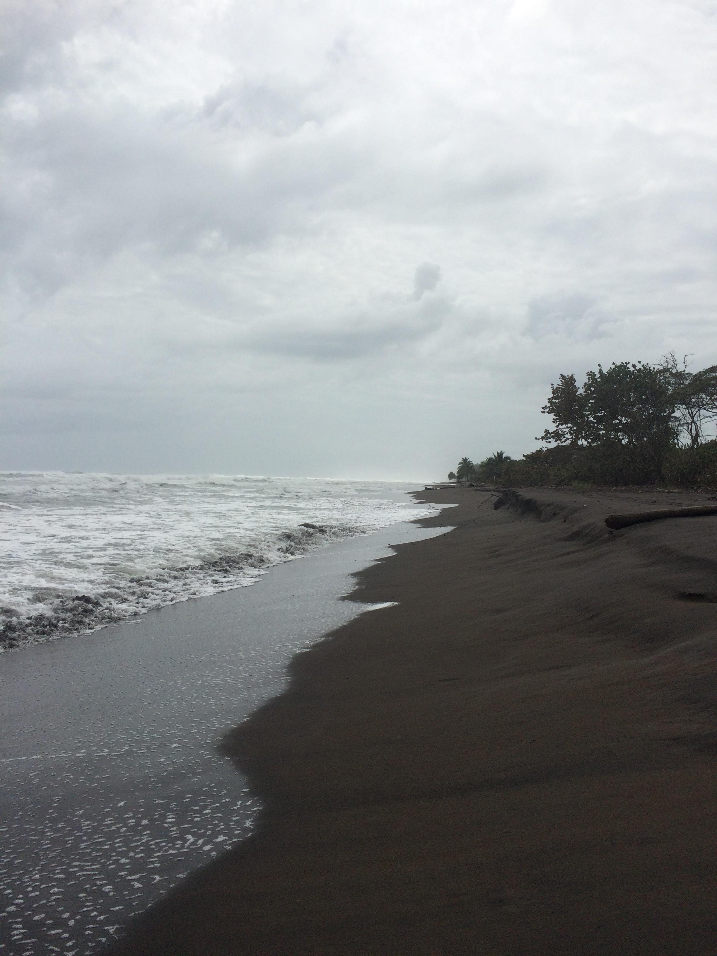 The beach along the Caribbean Sea