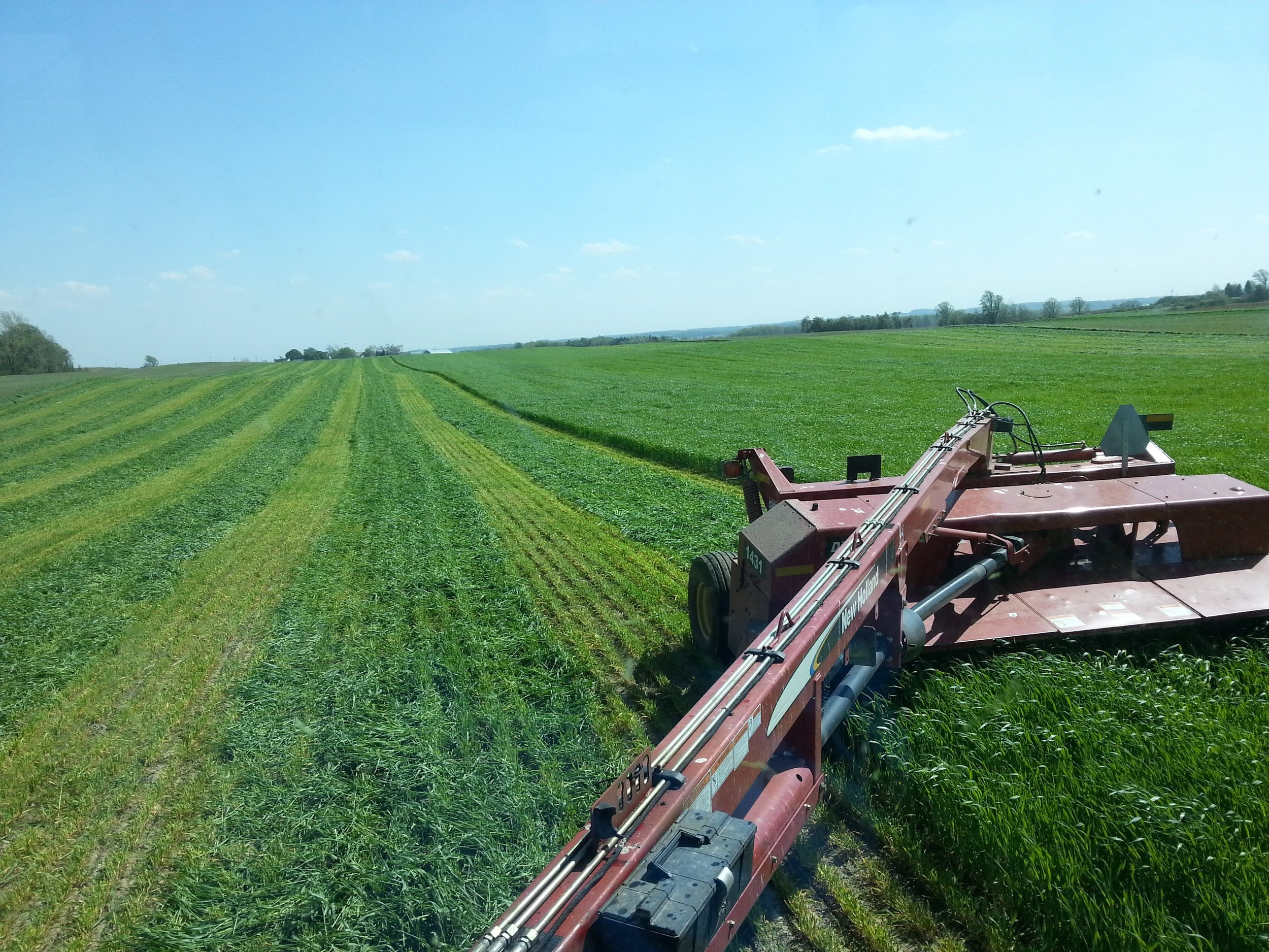Triticale Double Crop Harvest in May 2016. Photo provided.