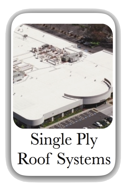 Single Ply Button New.png