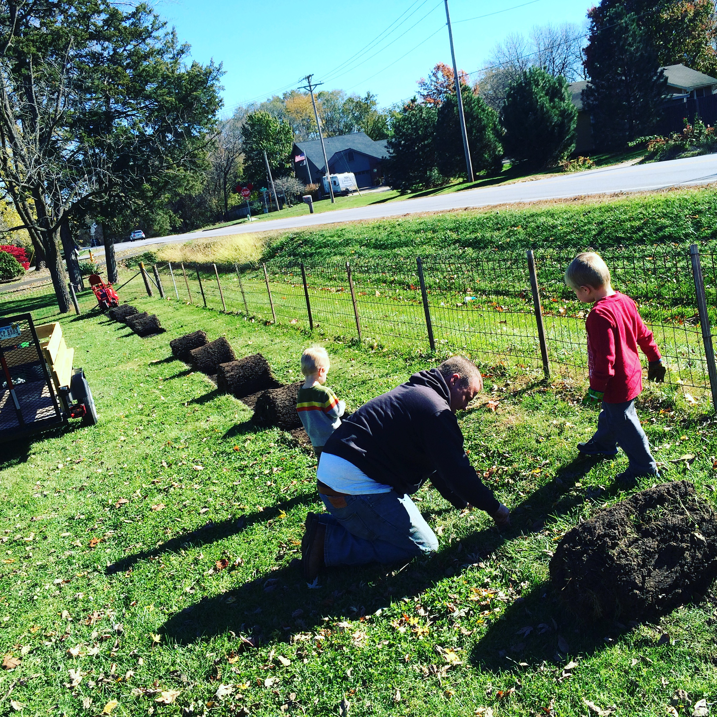 Here are the boys working with Dad to pull up the sod to make way for the new garden.