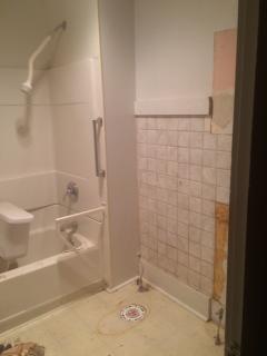 Main bath before