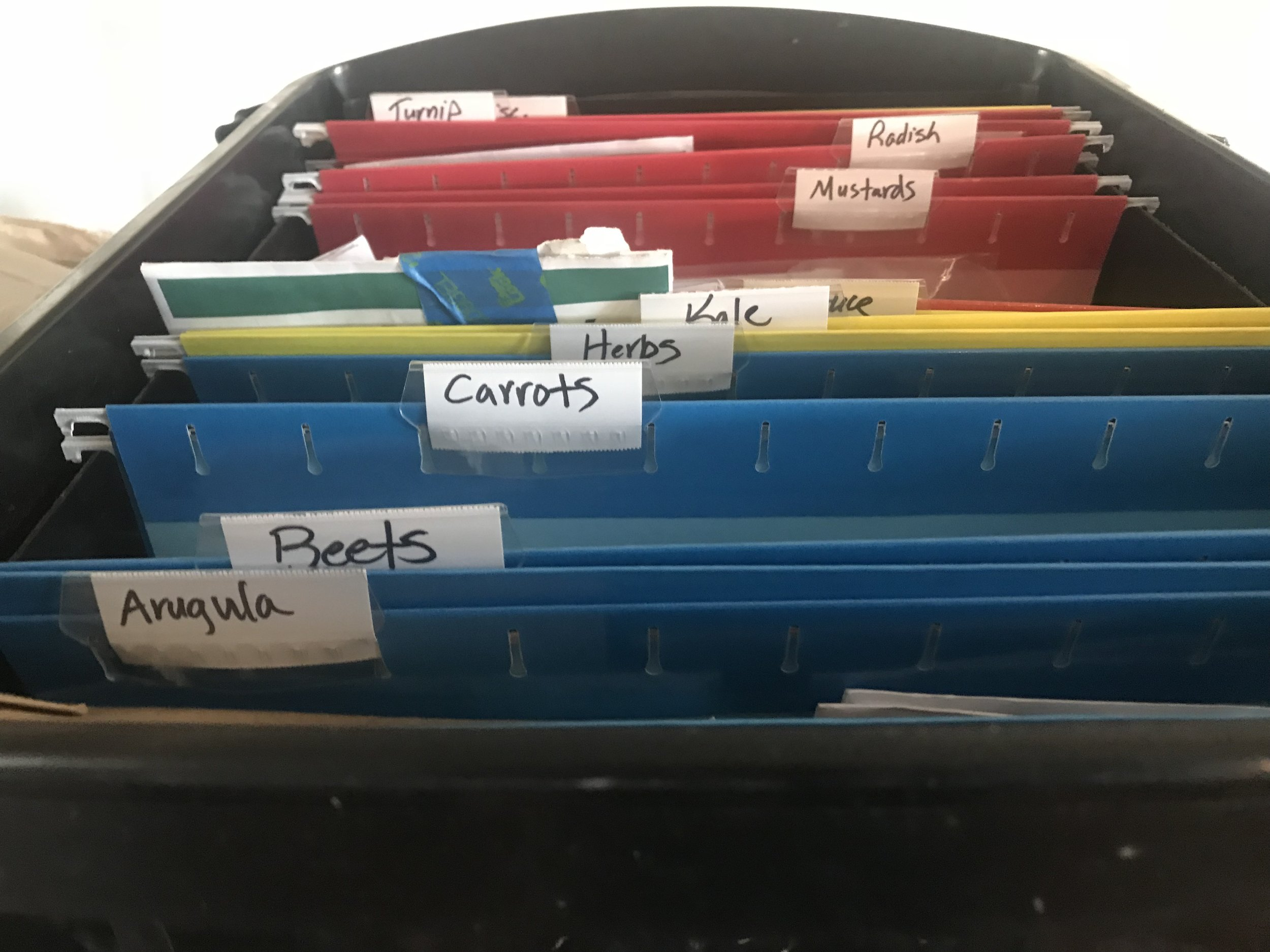 An example of how I store my seeds using a file box and file folders