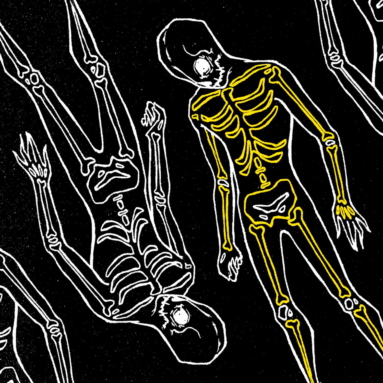20-skeleton.jpg