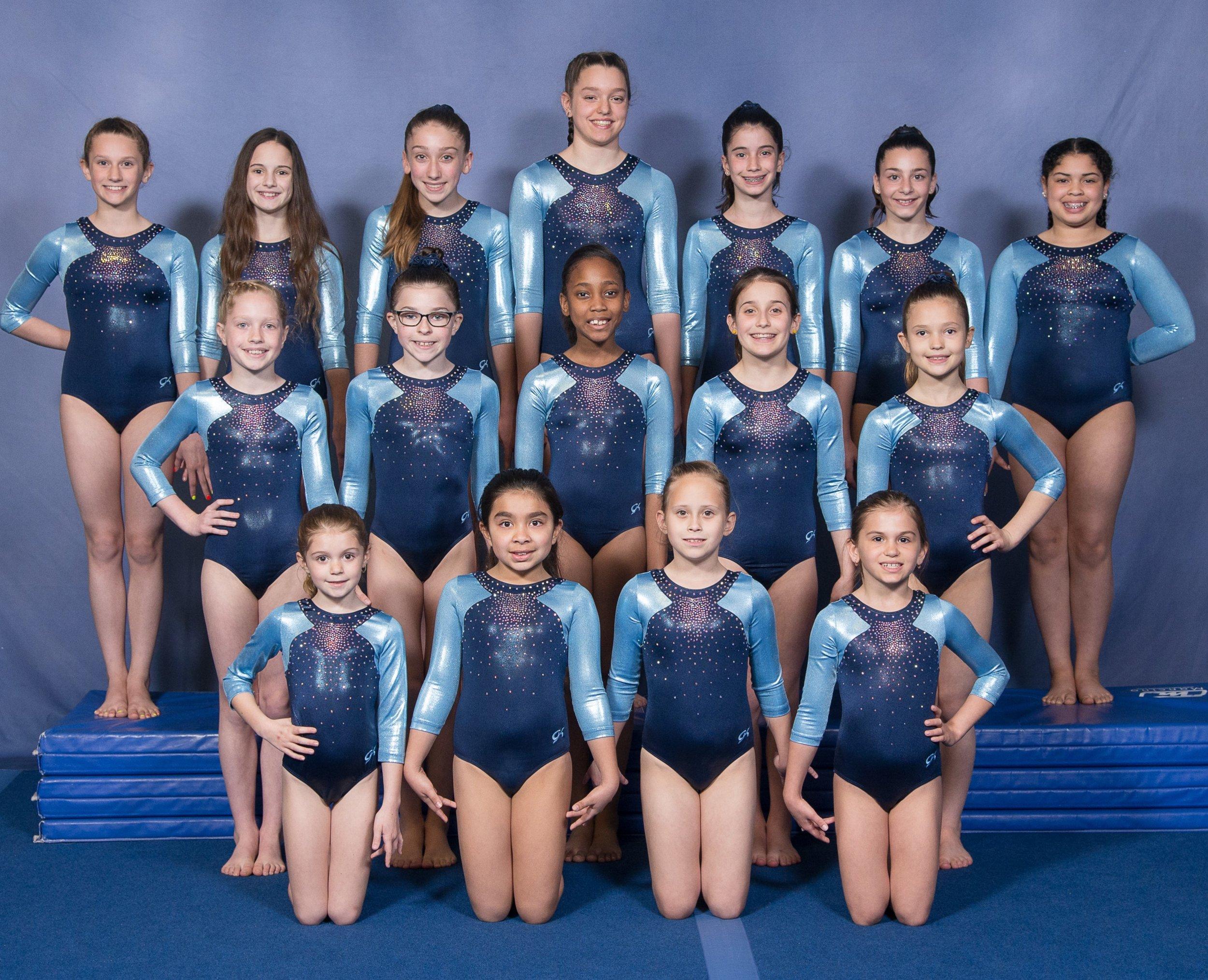 gymnastics team picture2019.jpg