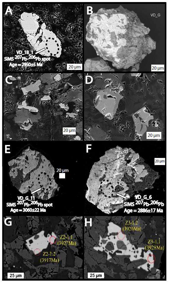 BSE images of in-situ VD_PB zircon (image A) and VD_G zircon (images B-F) compared to images of lunar meteorite SaU 169 (images G & H; Liu et al., 2012), highlighting similar poikilitic textures. See text for further description.