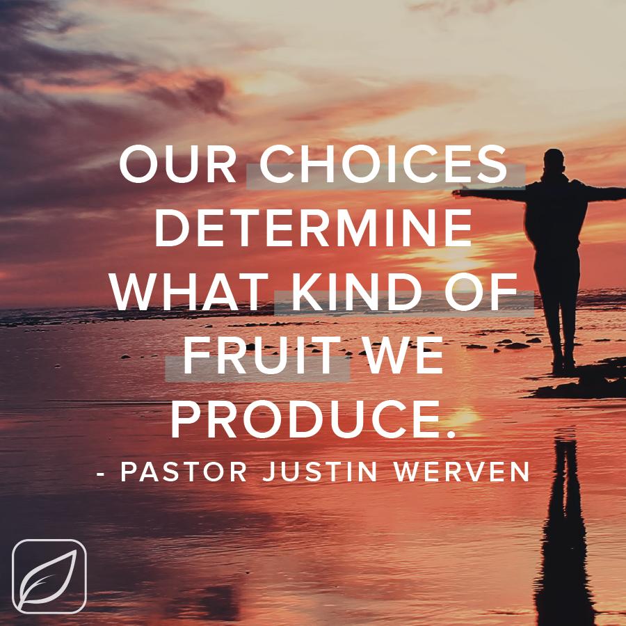 Pastor Justin Blog - Fruit-01.png