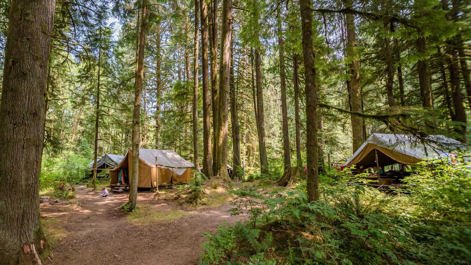 HVC-535-Tents.jpg