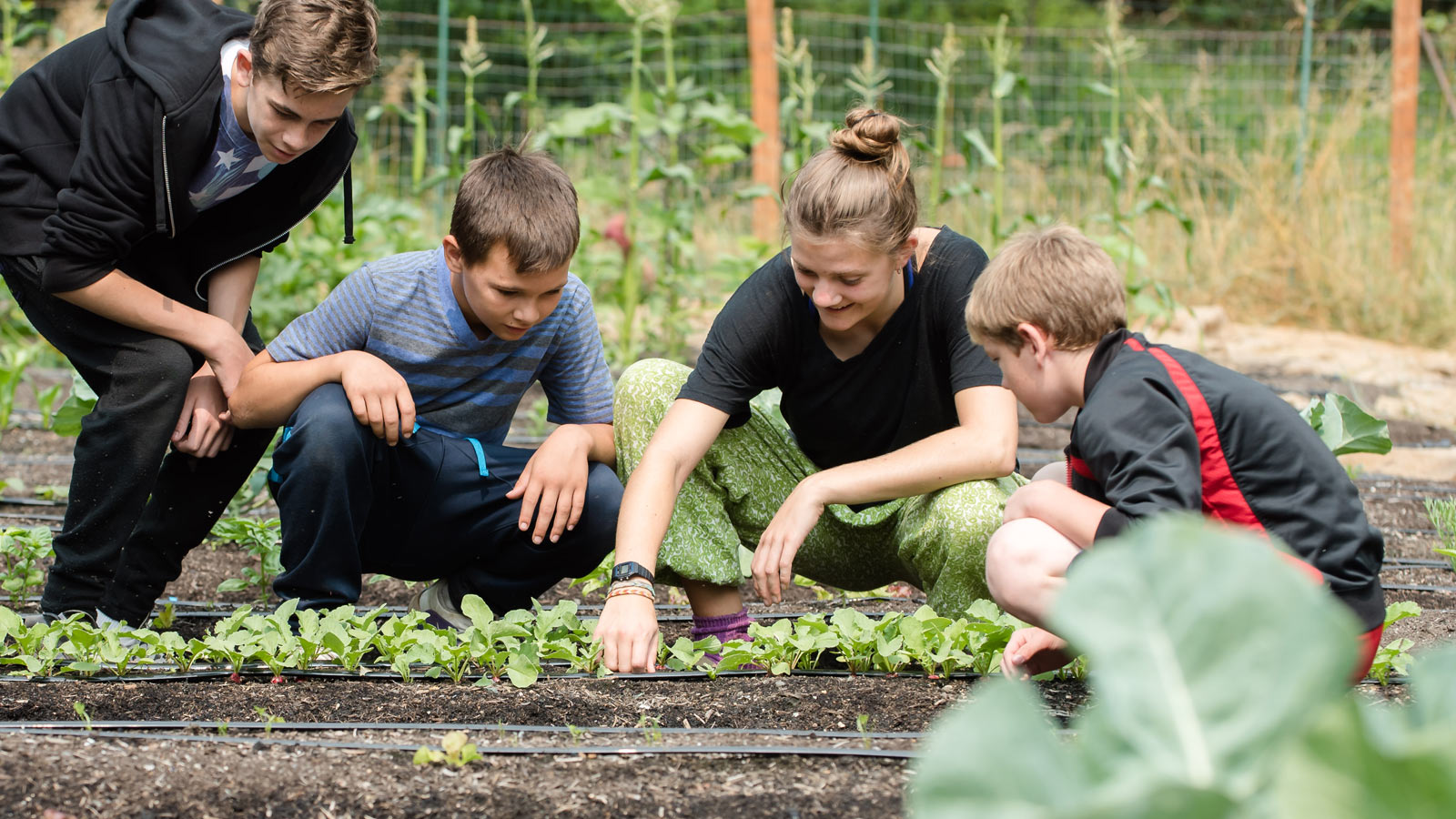 HVC-112-Gardening.jpg