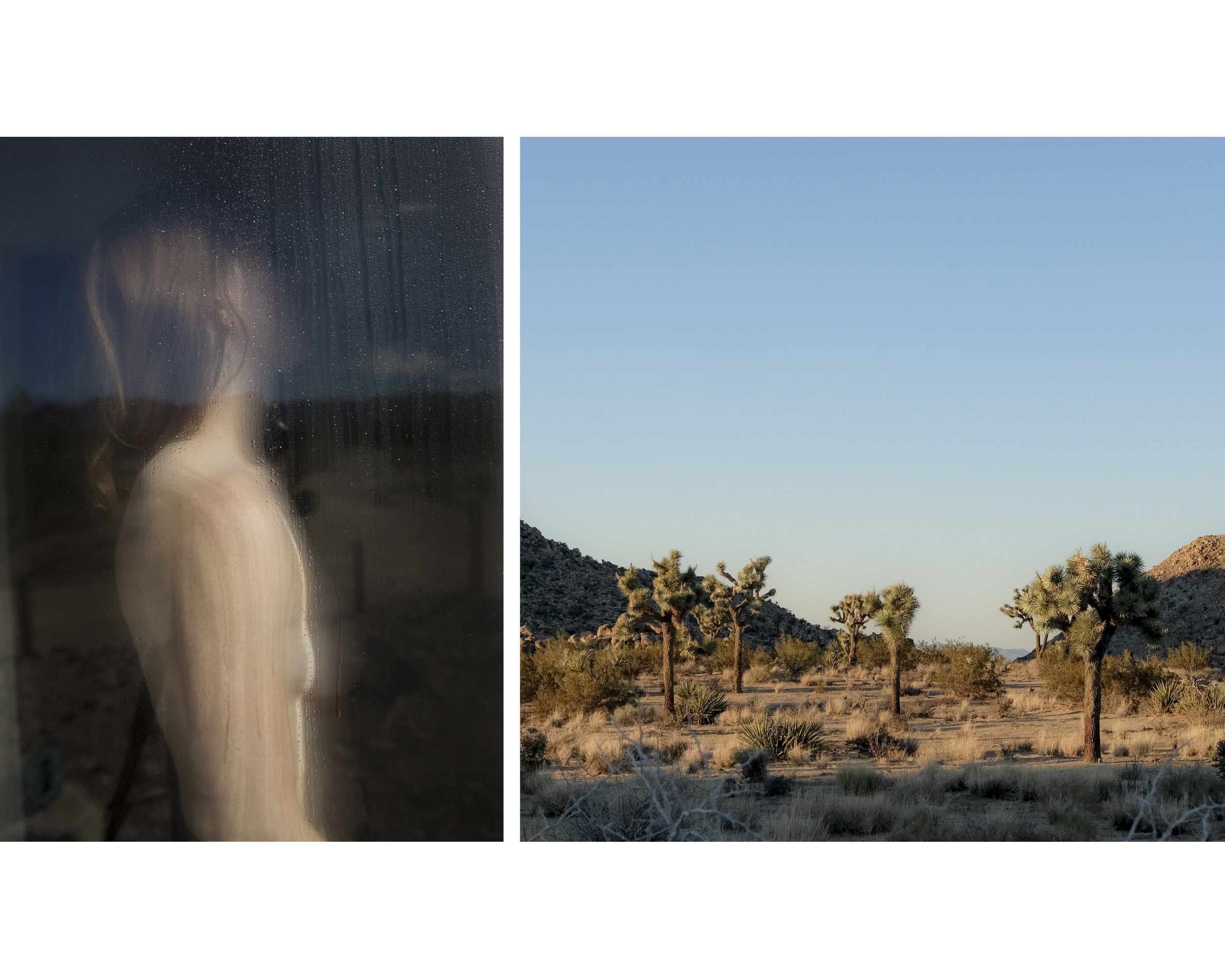 that time in joshua tree large 11.25 x 9.jpg