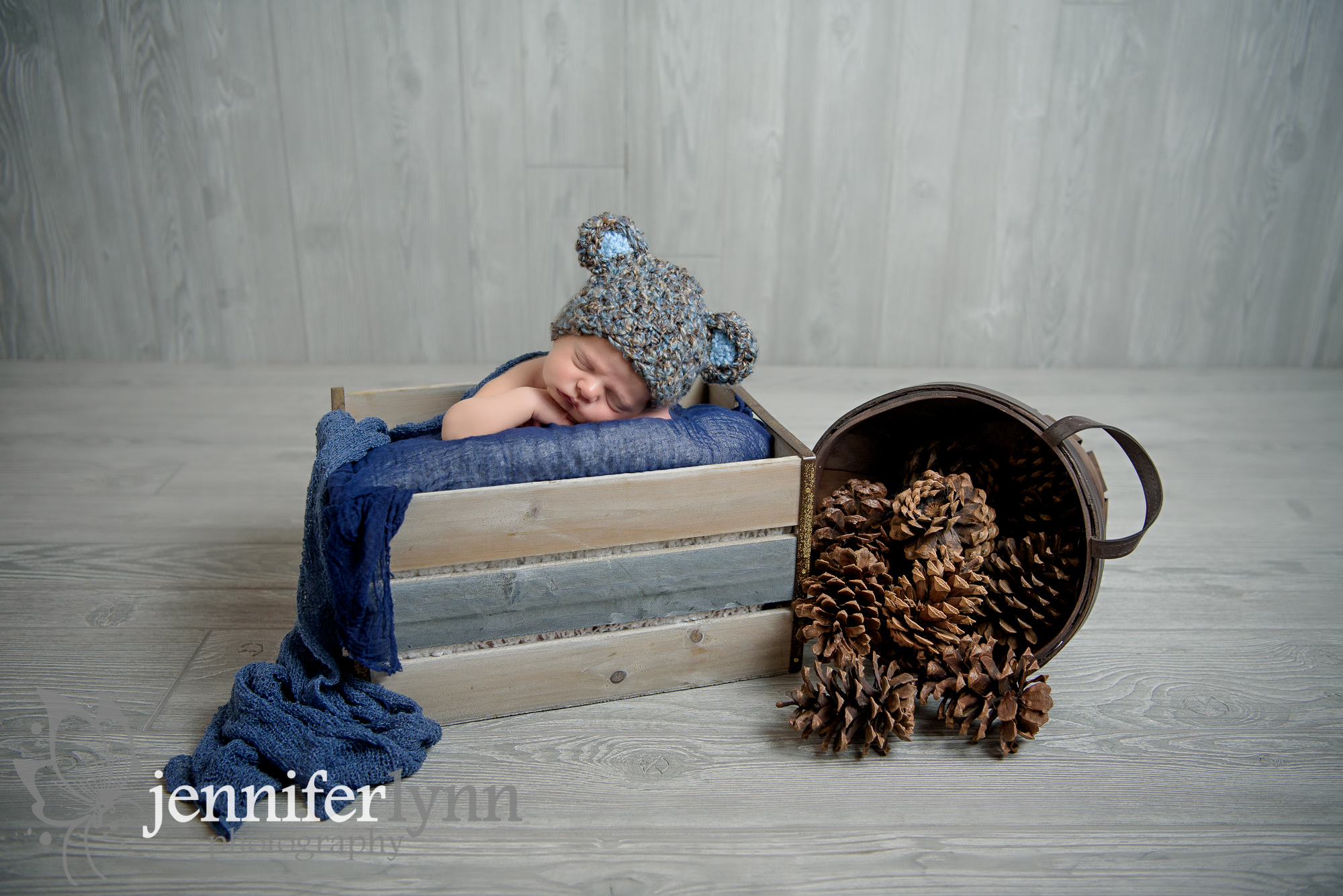 Newborn Boy Grey Crate and Pinecones with Bear Hat