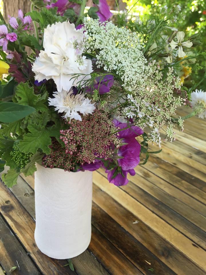 ammi. carnation. geranium.
