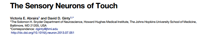 The Sensory Neurons of Touch