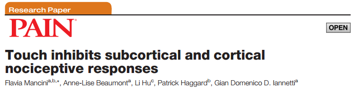 Touch inhibits subcortical and cortical nociceptive responses