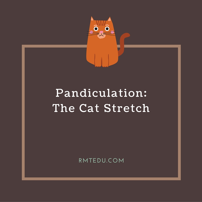 Pandiculation is a stretching and stiffening of the trunk and extremities, as when fatigued and drowsy or on waking, often accompanied by yawning.
