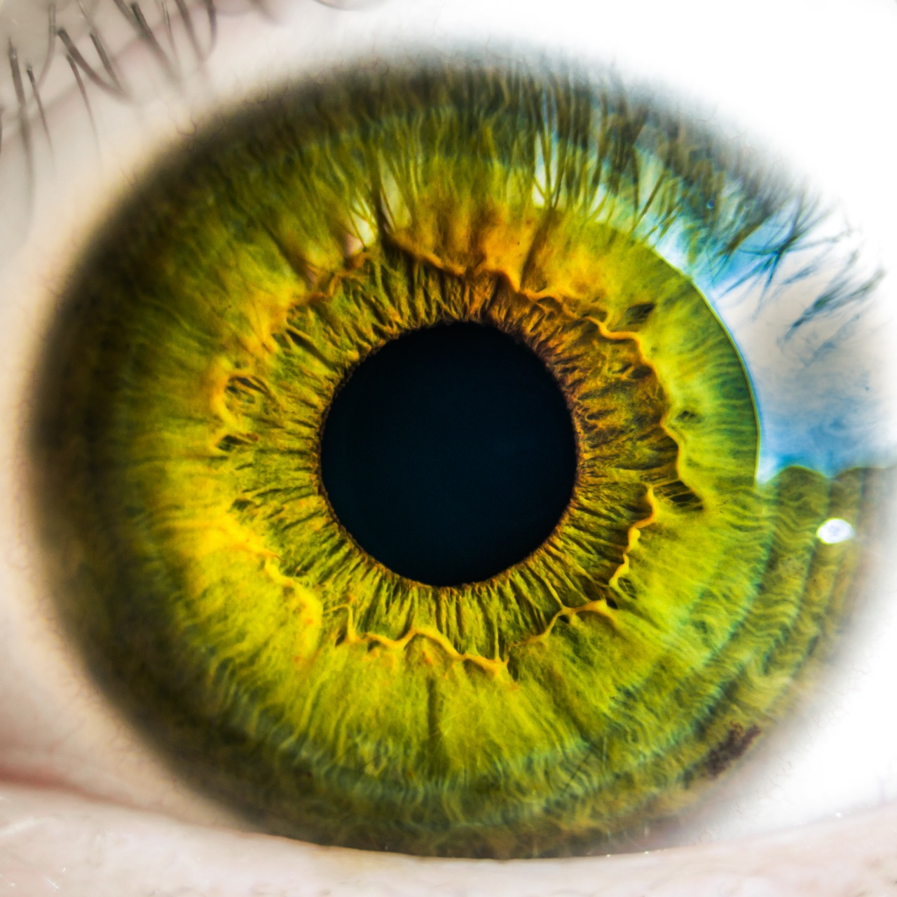 How we can tell that eyes are watching us