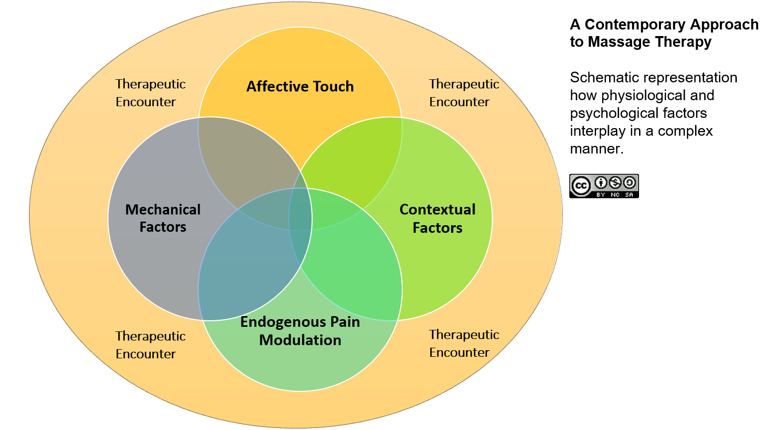 Why Does Massage Therapy Work