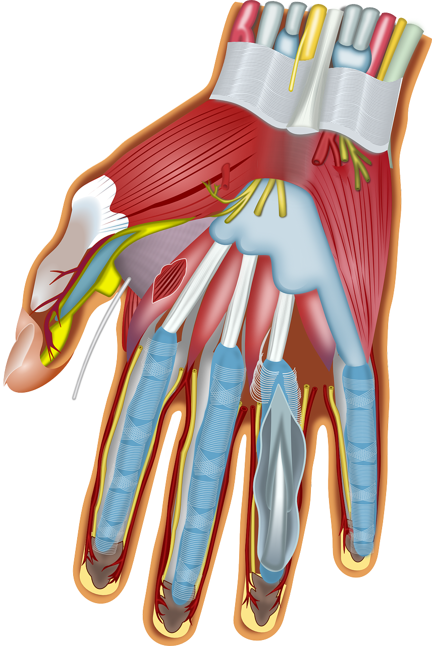 Carpal Tunnel Syndrome and Massage