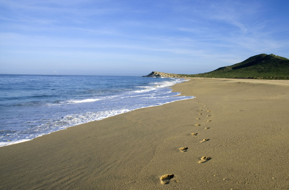 Beach_North.jpg