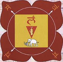 January: Root Chakra