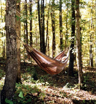 Lounging in the woods at Grey Bear Lodge