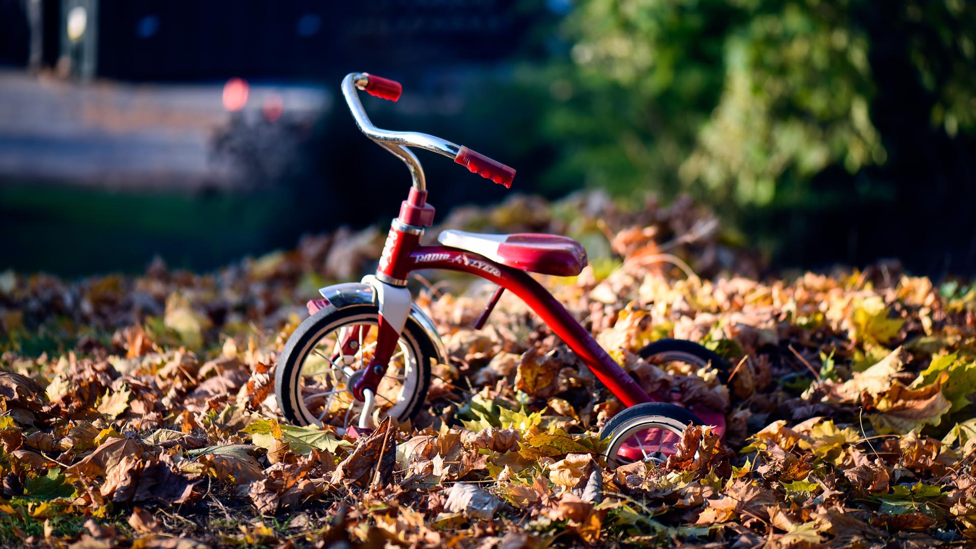 fall-leaves-tricycle-unsp.jpg