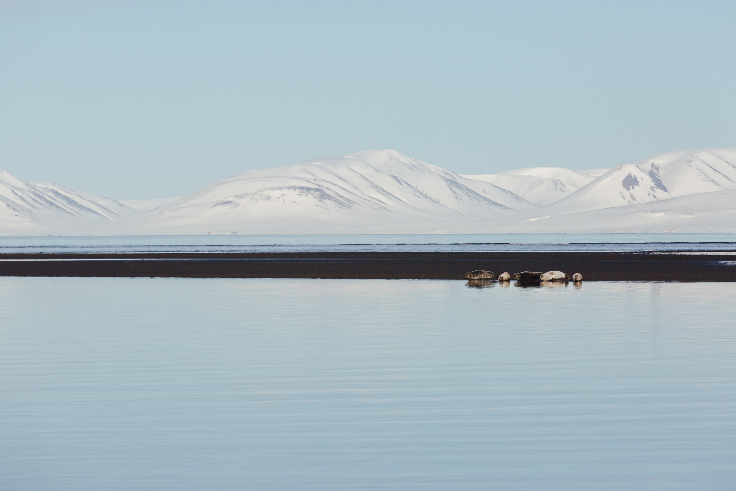 MikeSeehagel-Iceland-Photography-11.jpg