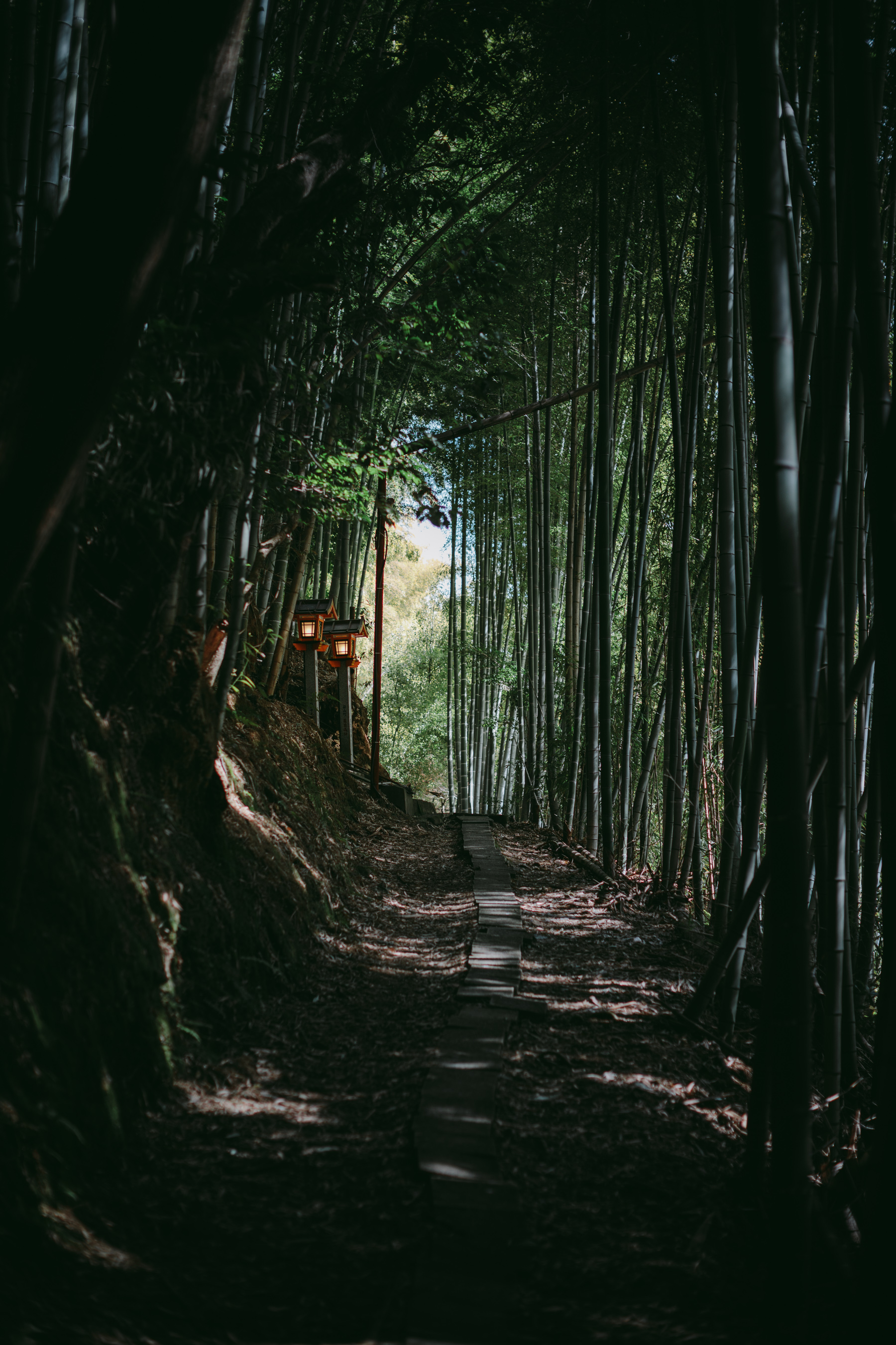 MikeSeehagel-commercial-lifestyle-travel-photography-Japan-50.jpg