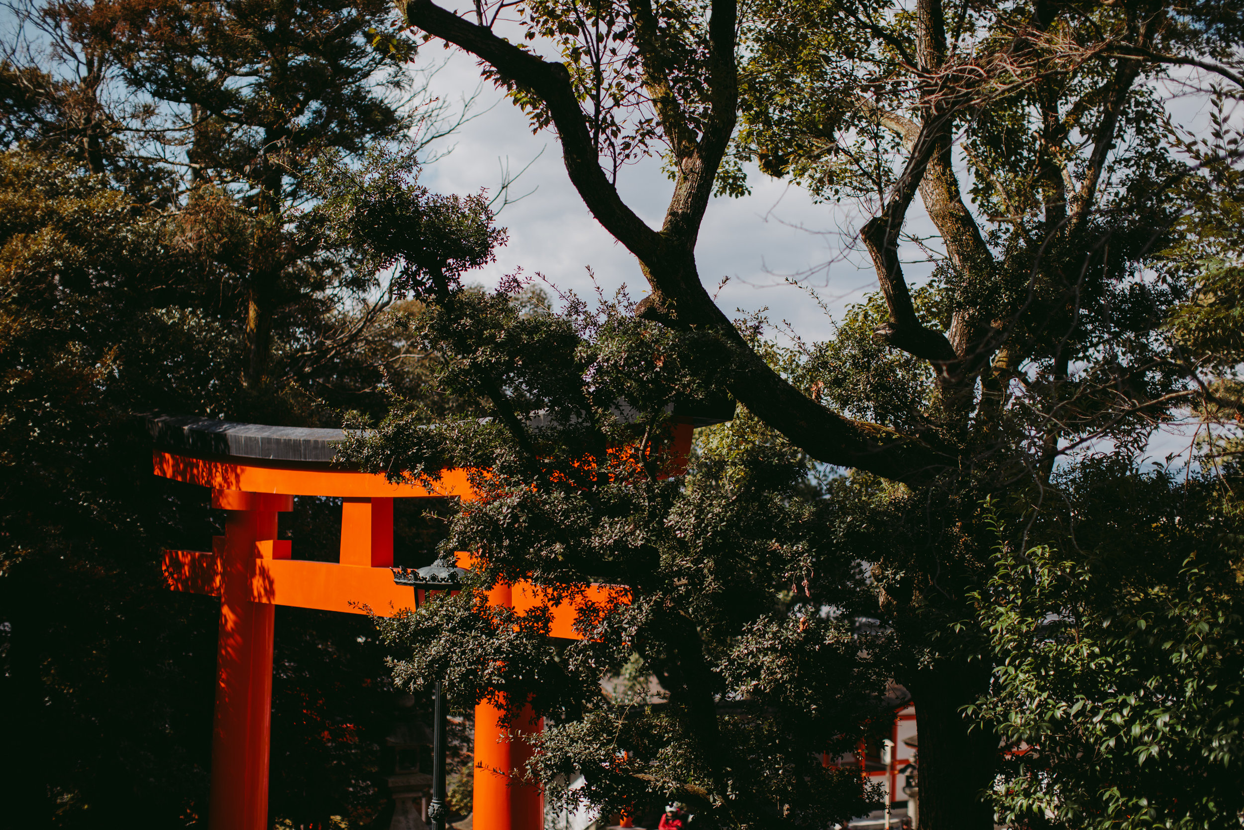 MikeSeehagel-commercial-lifestyle-travel-photography-Japan-54.jpg