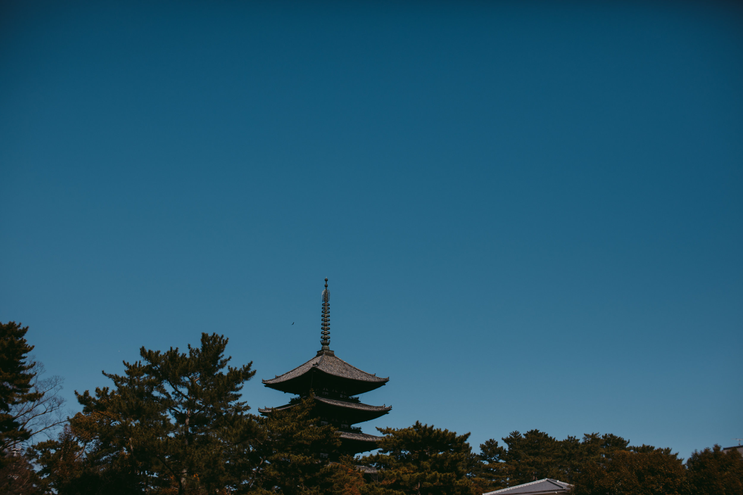 MikeSeehagel-commercial-lifestyle-travel-photography-Japan-77.jpg