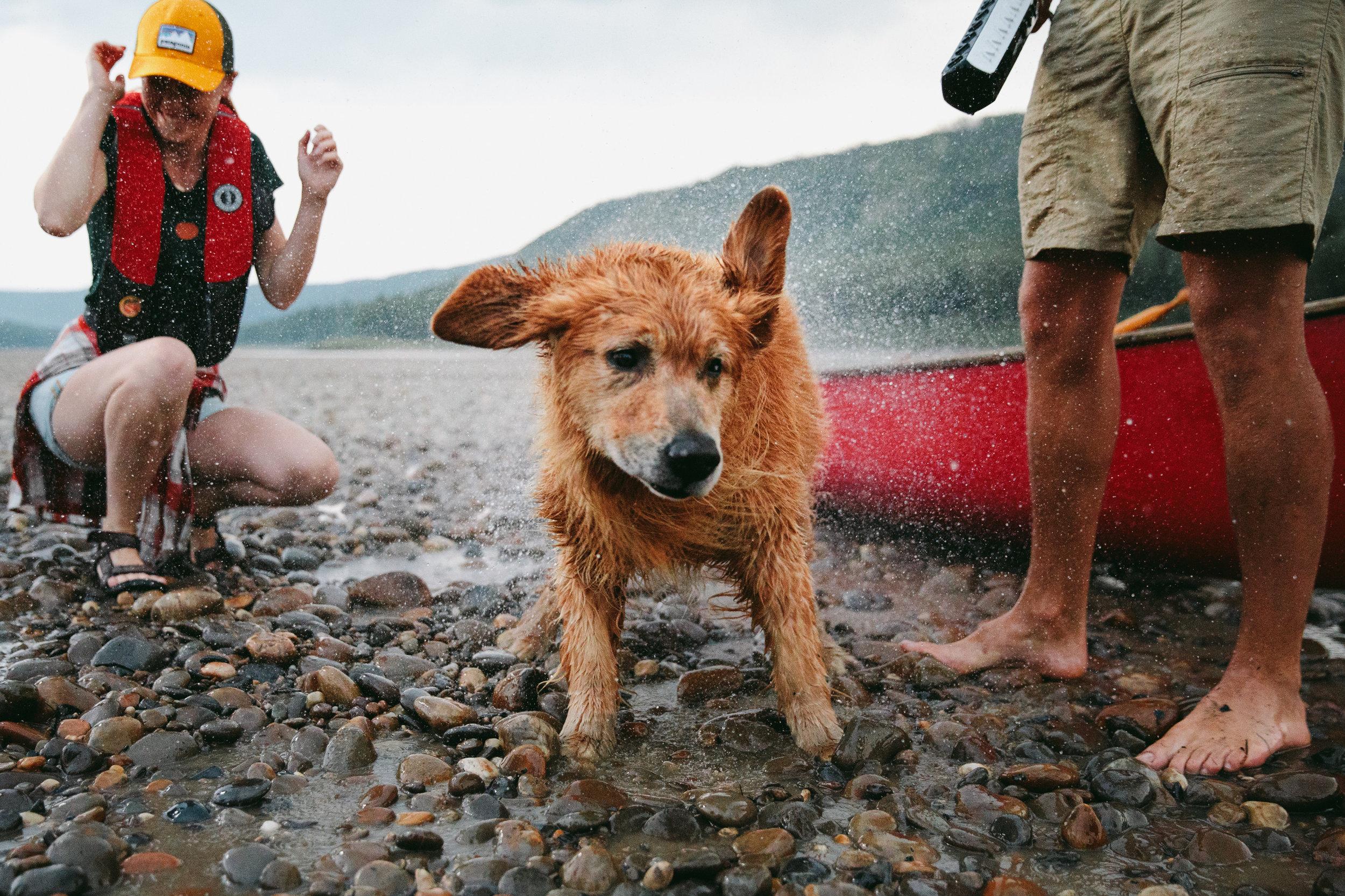 MikeSeehagel-TravelAlberta-Ready-Rebrand_Canada-LifestylePhotography_36.jpg